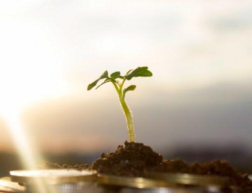 Nasce Value in Action, un ponte tra impresa e no-profit